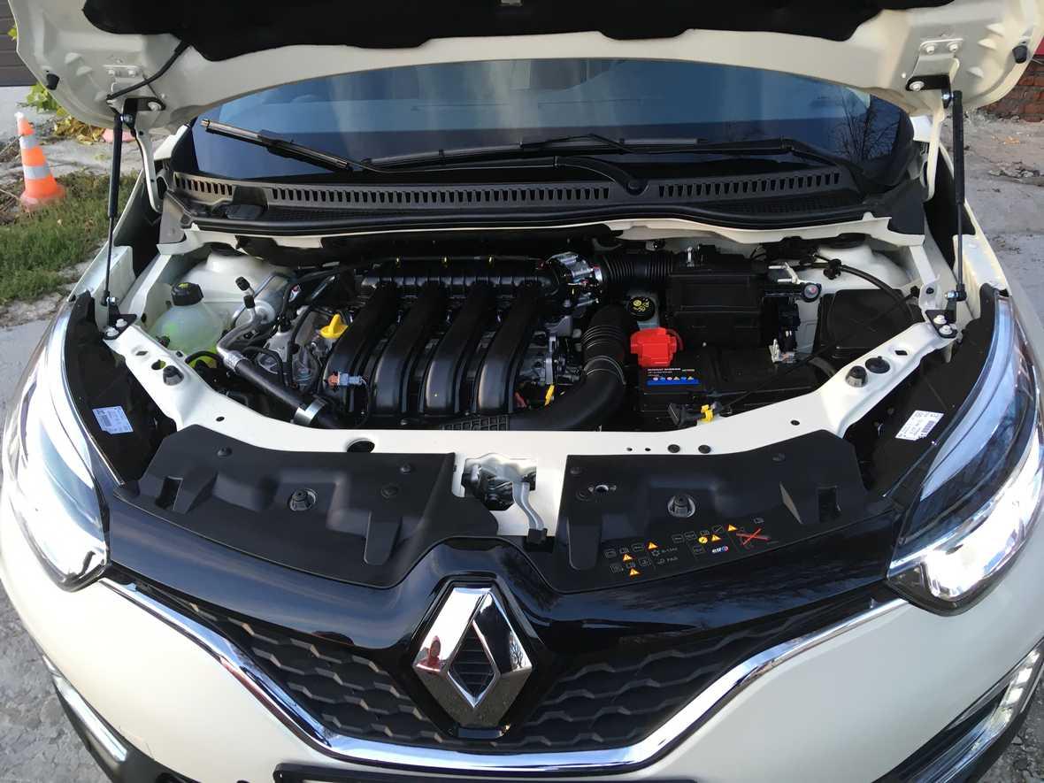 На фото мотор Renault Kaptur после химчистки с консервацией.