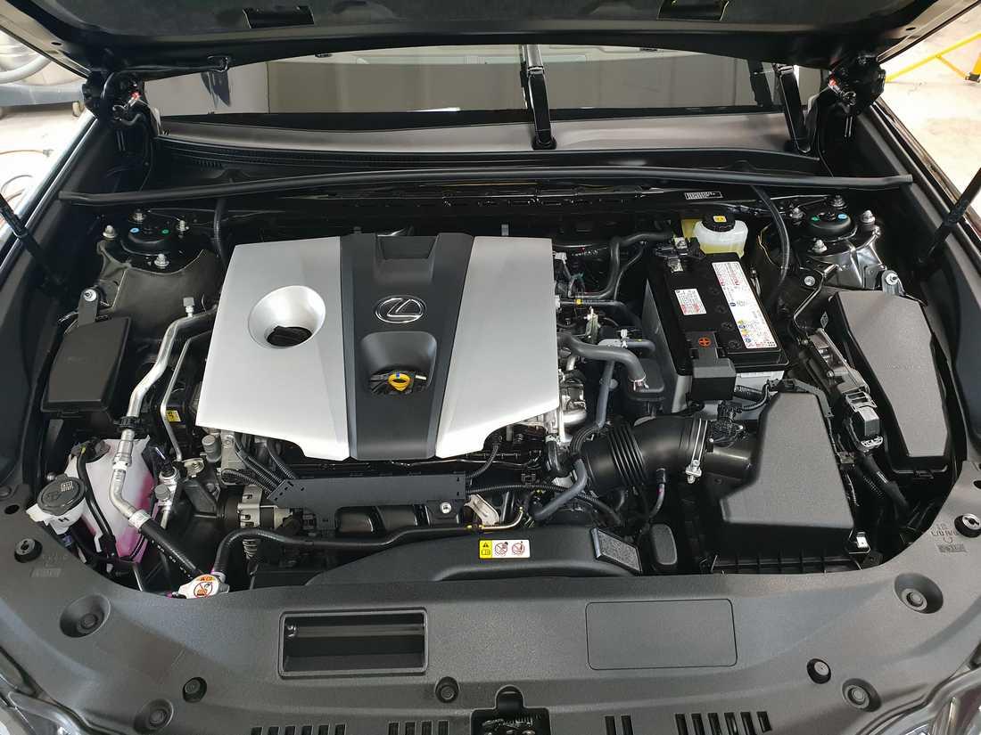 Смотреть фото двигателя Lexus ES250 после химчистки с консервацией.